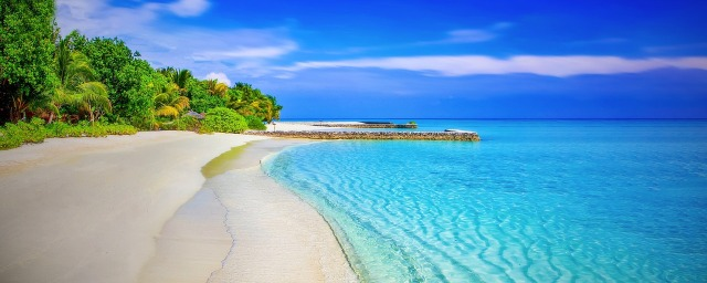 tropisk strand med klarblått hav